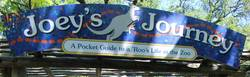 Image Result For Joeys World Tour